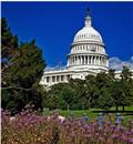 Congressional Bill