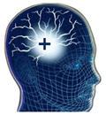 Head image - C-Level Execs