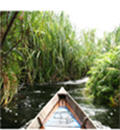 HP Sustainable Print - boat on river